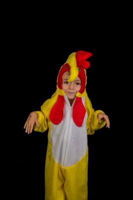 Inchiriere Costum serbare copii Cocos 185