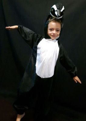 Inchiriere costum pinguin 1334