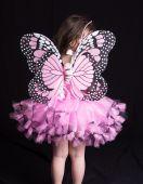 Inchiriere costum fluture 715