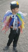 Costum serbare pasare colorata paiata, papagal 2004