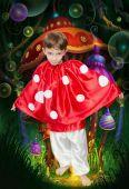 Costum serbare Ciupercuta baiat 514
