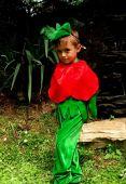 Costum serbare baiat Mac, Trandafir 647